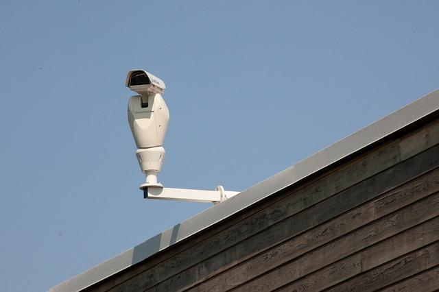 Telecamere IP per il giardino